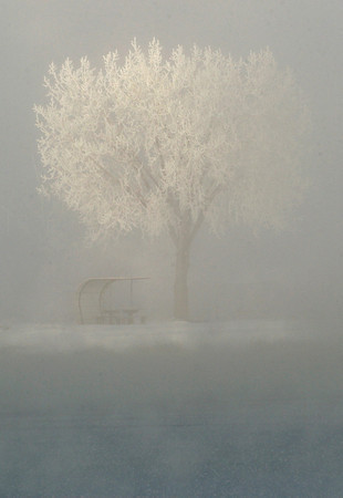 20041130_SNOW_COTTONWOODS_1