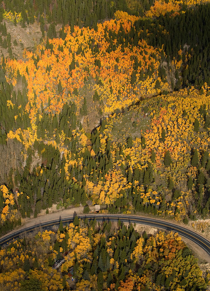 20081002_AERIAL_ASPEN_FALL_COLOR_2