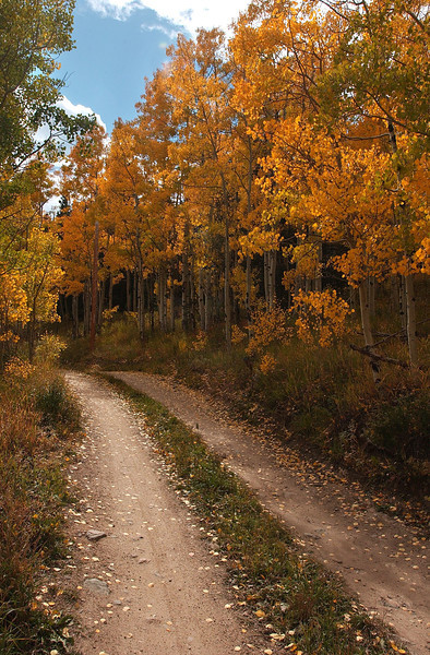 20081002_ASPENS_FALL_COLOR_ROAD