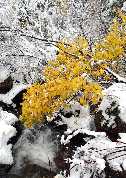 20051010_WEATHER_SNOW_2