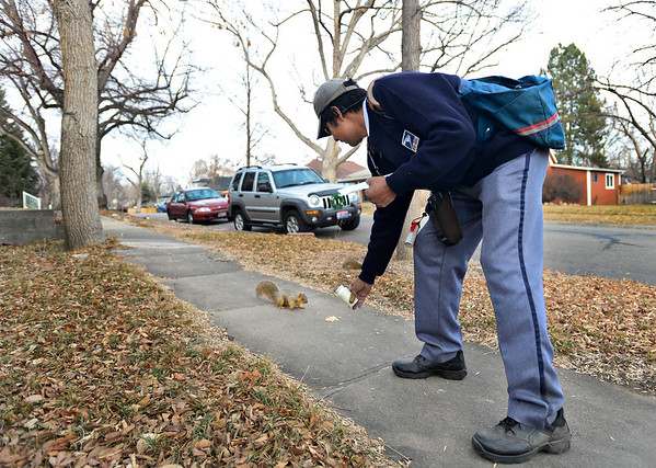 "Jose Chavez feeds peanuts to squirrels along his delivery route in Longmont on Thursday, Dec. 13, 2012. Despite being diagnosed with multiple sclerosis in 2001, Chavez has been delivering mail along the same route for 12 years. For more photos and video visit  <a href=""http://www.TimesCall.com"">http://www.TimesCall.com</a>.<br /> (Greg Lindstrom/Times-Call)"
