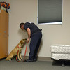 Fire Investigator, Mike Manzo rewards Holly, the arson sniffing dog during a demonstration Monday, Nov. 26, 2012, at the Longmont Fire Department Station 1. Holly replaced former arson K-9, Shadow, after his retirement this past fall. <br /> (Elaine Cromie/For the Times-Call)