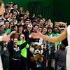 "Niwot students celebrate a Cougar basket in the first half during the game at Niwot High School on Tuesday, Jan. 15, 2013. Silver Creek beat Niwot 68-55. For more photos from the game visit  <a href=""http://www.BoCoPreps.com"">http://www.BoCoPreps.com</a>.<br /> (Greg Lindstrom/Times-Call)"