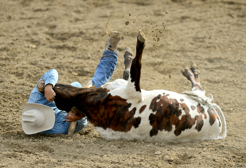 RODEO_0729