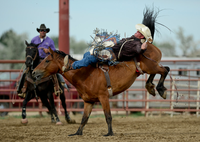 RODEO_0647