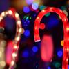 20141208_Holiday_Lights_046