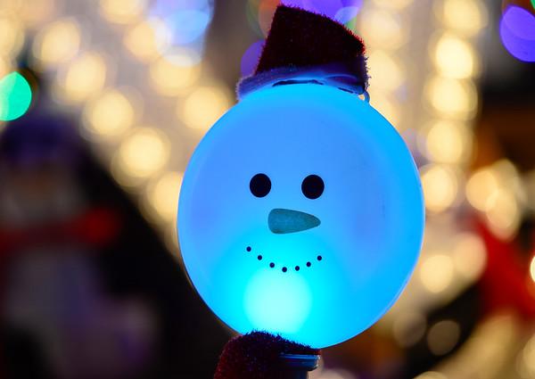 20141208_Holiday_Lights_113