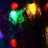 20141208_Holiday_Lights_105