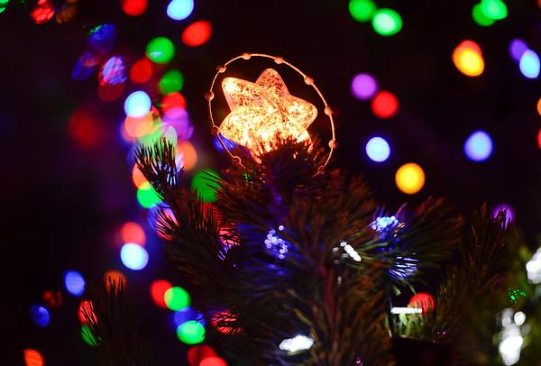 20141208_Holiday_Lights_135