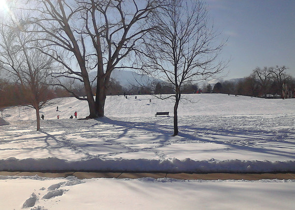 Scott Carpenter Park in Boulder Monday, Feb. 25th. (Photo submitted by Roberto Gonzalez)