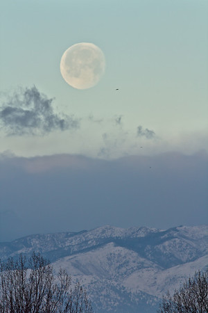 Moonset over the foothills on January 29th, as seen from Firestone. (Photo submitted by Tim Atkinson)