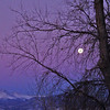 The moonset Saturday Dec. 29, 2012. This is a view from Hillcrest Drive, just north of Longmont. (Photo submitted by Viv Fausset)