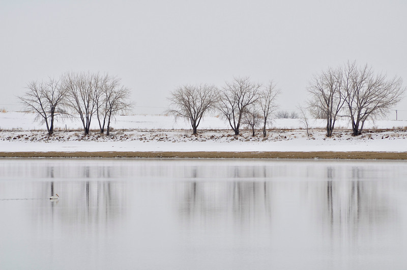 A photo of Union Reservoir taken in March. (Photo submitted by John La Ferlita)