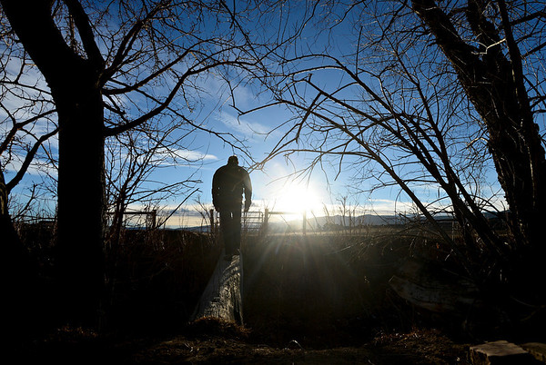 "Bill Berg crosses a log over an irrigation ditch along his property while finishing his evening chores at Ridge Ranch in Hygiene on Thursday, Jan. 31, 2013. For more photos and a video visit  <a href=""http://www.dailycamera.com"">http://www.dailycamera.com</a>.<br /> (Greg Lindstrom/Times-Call)"