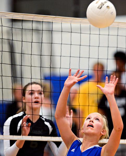 Longmont Niwot Volleyball