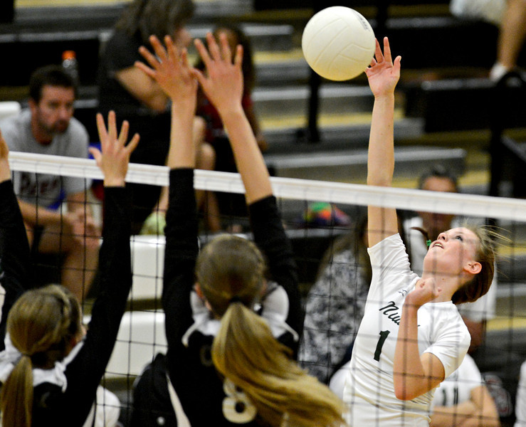 Silver Creek Niwot Volleyball