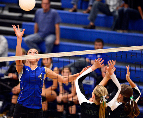 Longmont Niwot Volleyball