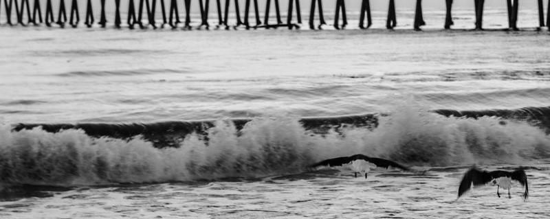Santa Barbara Ocean 2GU