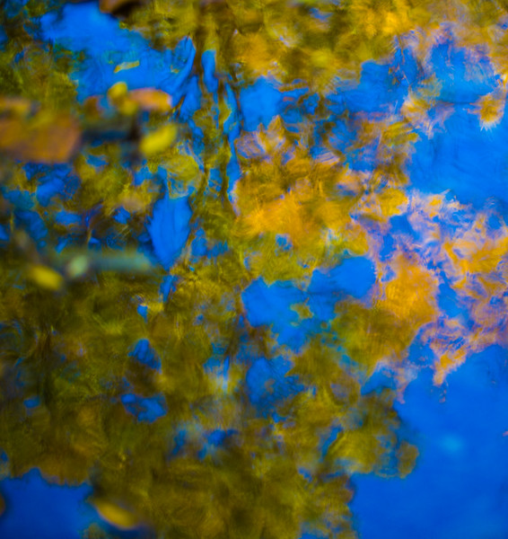 FALL REFLECTIONS 2014  6