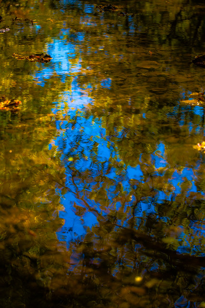 FALL REFLECTIONS 2014  10