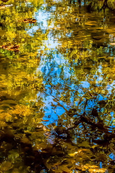 FALL REFLECTIONS 2014  11