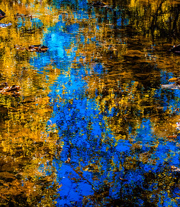 FALL REFLECTIONS 2014  14