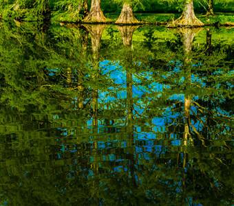 June 1 2014 Nature 2