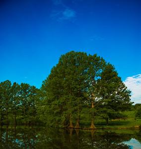 June 1 2014 Nature 8