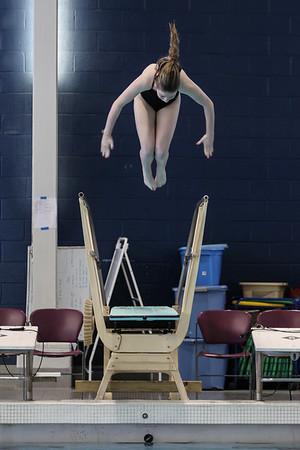 ALL PHOTOS_2015 NoVa Catholic Invitational Swimming and Diving Championships