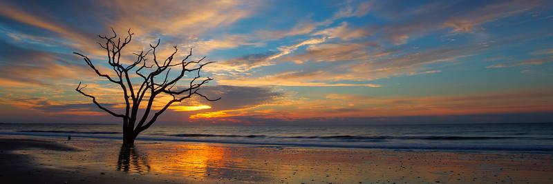 Edisto Beach, Botany Bay Plantation, South Carolina