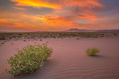 Bruneau Sand Dunes, Idaho