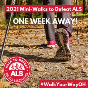2021 Mini-Walks in a week insta