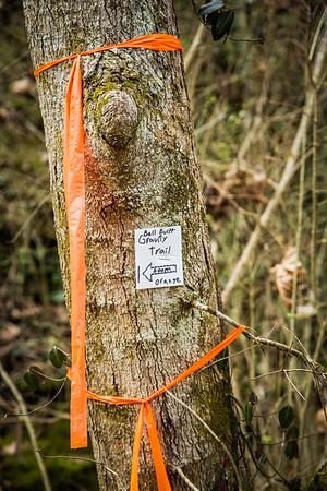 Baker Creek Preserve Work Day 20160312