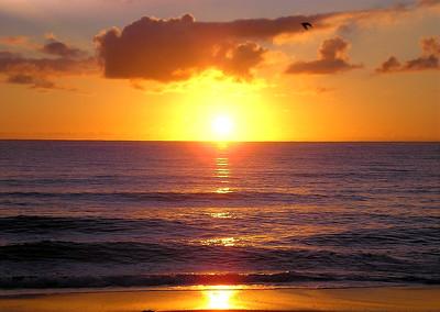 Good Morning Boca
