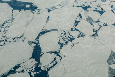 Pack Ice Greenland