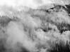 Firefighting plane flying through a clowd of smoke