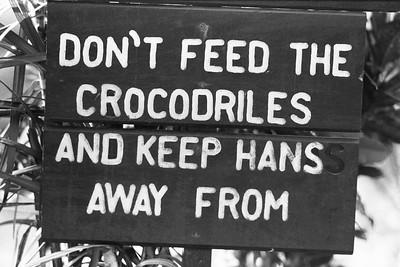 Don't Feed Crocidiles