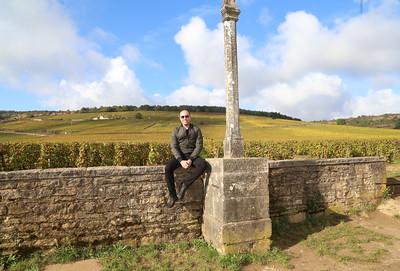 Amex_Burgundy_2016-825