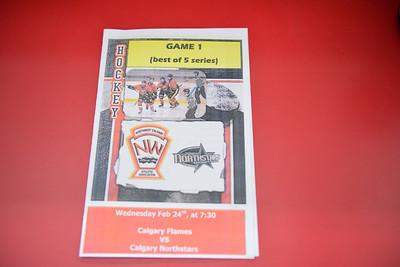 AMHL NWCAA Flames Playoff Game #1 v Northstars February 24 , 2016