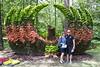 June & Tony @ Garvan Gardens