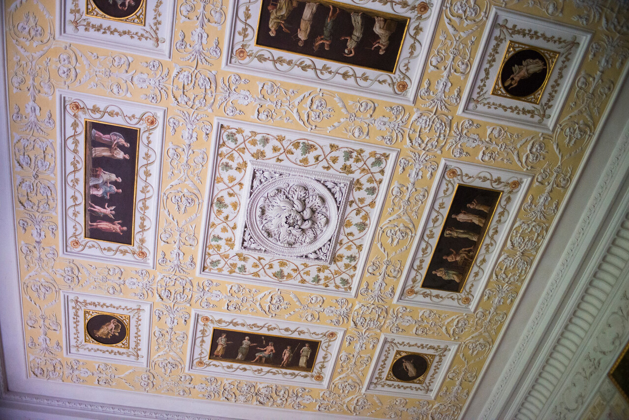 Wörlitz Palace ceiling detail.