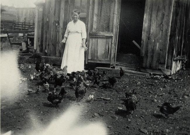 Mark Amyx's mother, Grandma Melissa Thompson-Amyx-Provoncher on the Provoncher homestead on Lower Blanco, S of Pagosa Springs, Colorado.