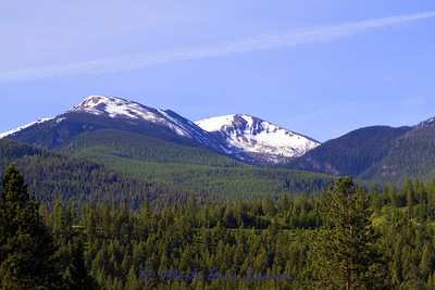 On the way to Lolo Pass and Packer Meadows and forest for a high elevation field trip. This is a stop on the highway west of Lolo. Lolo Peak is in the background.