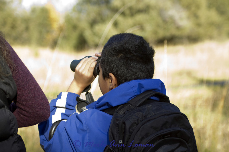 Wildlife walk, using binoculars.