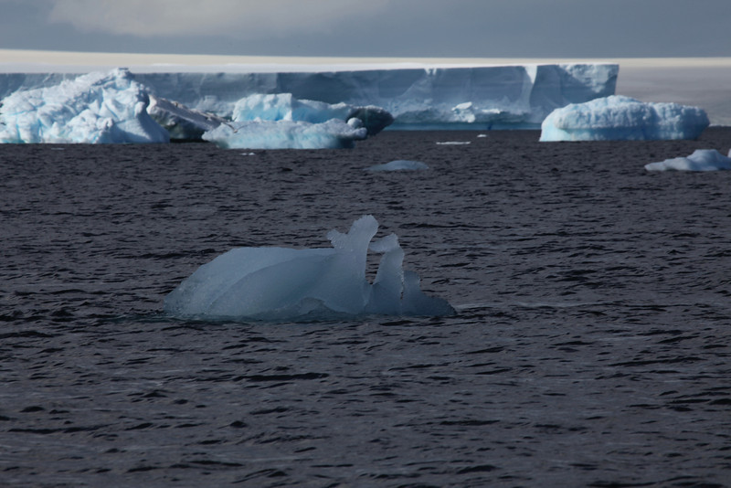 Some icebergs can be almost transparent.