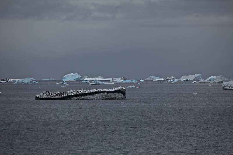 "While many of the icebergs are a pristine white, some like these are very dirty.  This can come from where they ""broke off"" of the ice shelf as well as being due to weather."