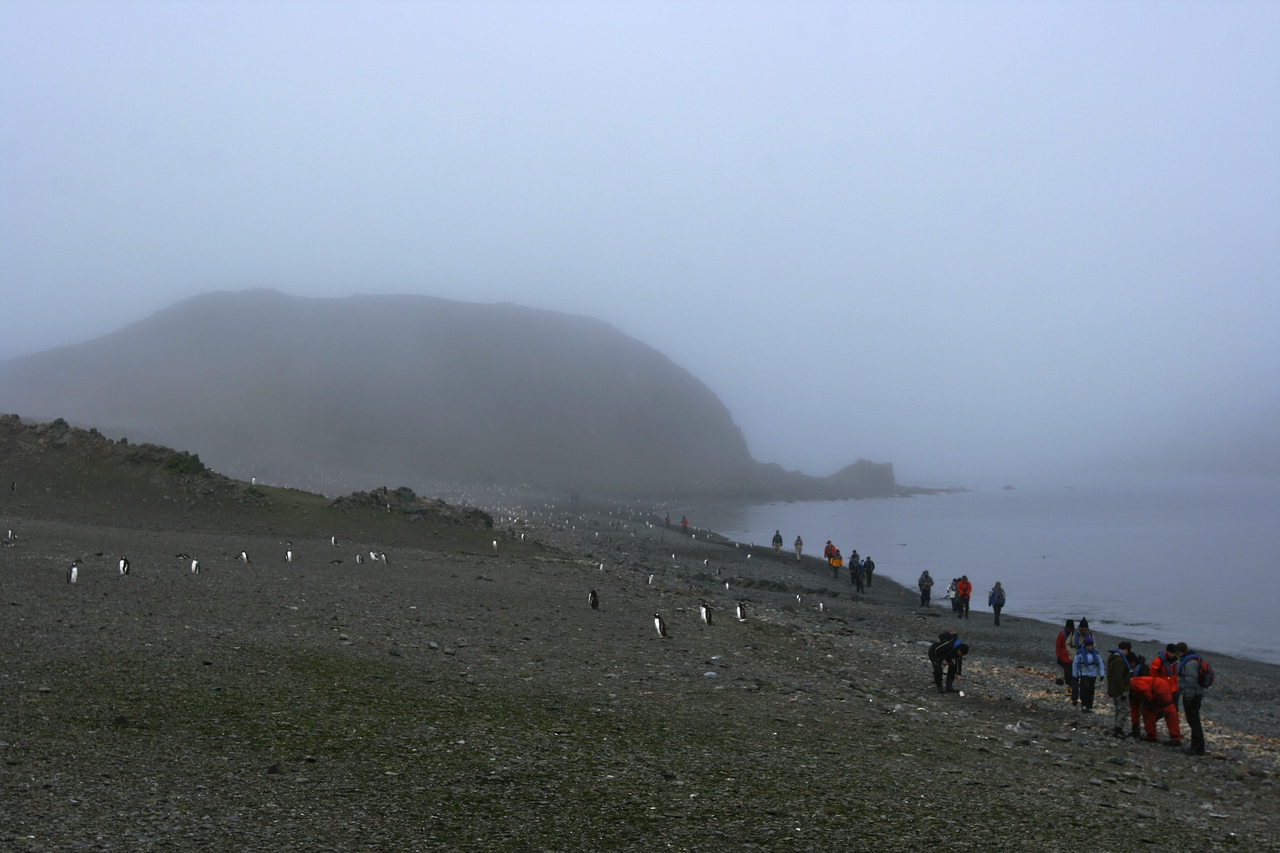 The weather was somewhat uncooperative as you can see by the fog.