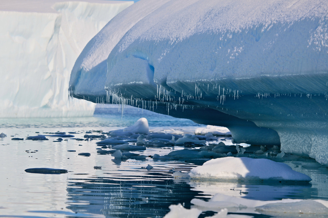 Floating through the thousands of icebergs in Pleneau is like floating through the canals of Venice.