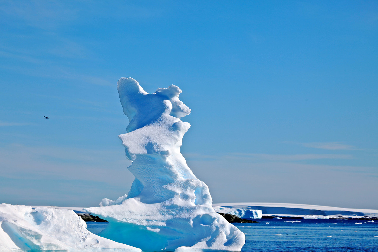 This iceberg looks like a horse rearing on it's back legs.