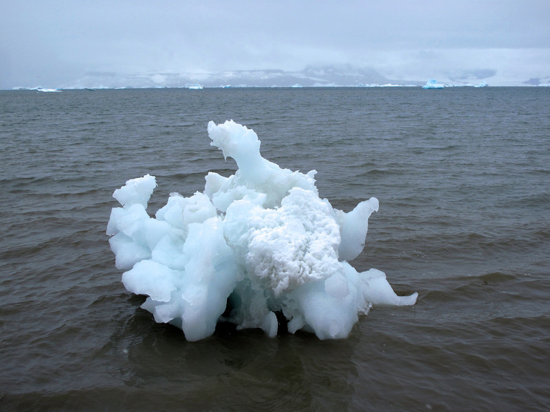 Sometimes the current brings small icebergs up on shore.